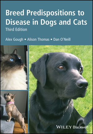 What to Do If Your Dog Is Suffering from Genetic Disease
